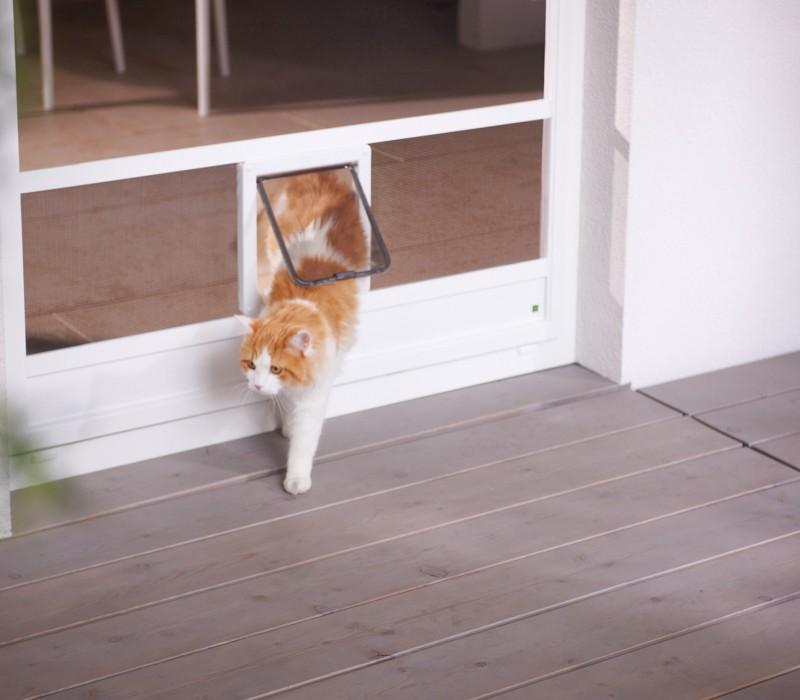 Insektenschutz mit Katzenklappe_14